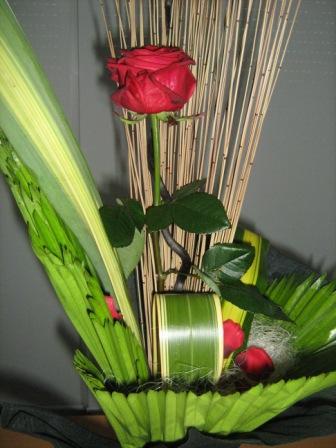 rosa-s-jordi-2008-004.jpg
