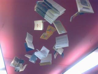librosvuelan