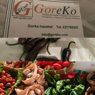 goreko_2_arenal