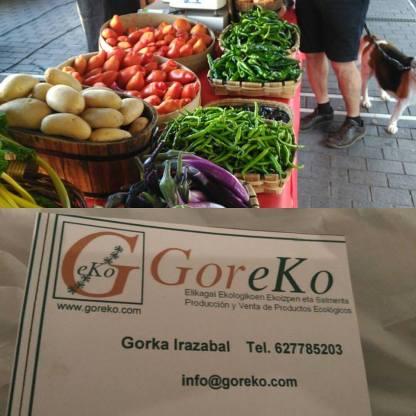 goreko_arenal